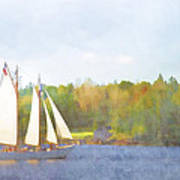 Schooner Castine Harbor Maine Poster by Carol Leigh