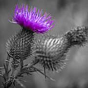 Scotland Calls 1 Poster