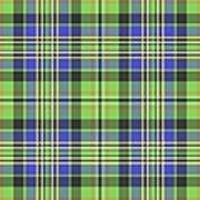 Scott Ancient Green Tartan Poster