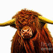 Scottish Highlander Poster