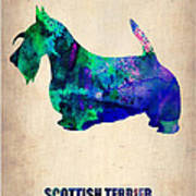 Scottish Terrier Poster Poster by Naxart Studio