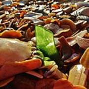 Sea Glass And Shells 16 10/2 Poster