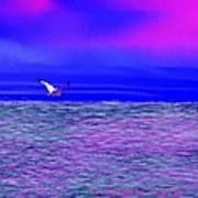 Sea. Last Rays Of Sun Poster