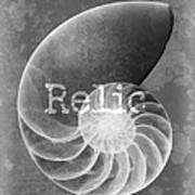 Sea Shell Relic Logo Poster