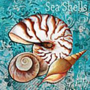 Sea Shells Original Coastal Painting Colorful Nautilus Art By Megan Duncanson Poster by Megan Duncanson
