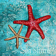 Sea Shore Original Coastal Painting Colorful Starfish Art By Megan Duncanson Poster