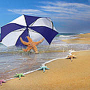 Sea Star Celebration  Poster