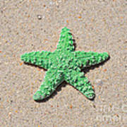 Sea Star - Green Poster by Al Powell Photography USA