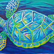 Sea Turtle I Poster