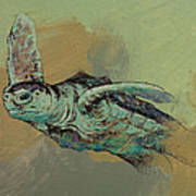 Sea Turtle Poster by Michael Creese