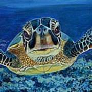 Sea Turtle Poster by Shirl Theis