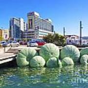 Sea Urchin Sculpture Wellington New Zealand Poster