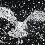 Seagull - Oil Portrait Poster