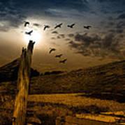 Seasons Of Change Poster