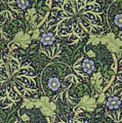Seaweed Wallpaper Design Poster