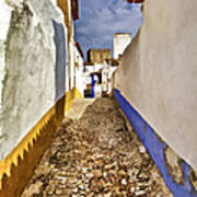 Secluded Cobblestone Street In The Medieval Village Of Obidos IIi Poster