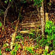 Secret Stairway Poster