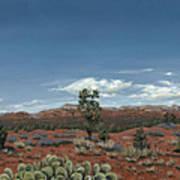Sedona Cactus Az Poster
