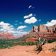 Sedona Desert Scene Poster