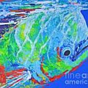 semi abstract Mahi mahi Poster