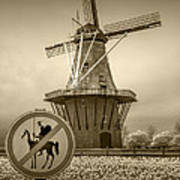 Sepia Colored No Tilting At Windmills Poster
