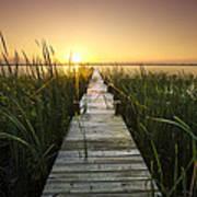 Serenity At The Lake Poster