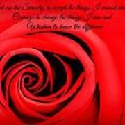 Serenity Rose Poster