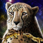 First In The Big Cat Series - Cheetah Poster