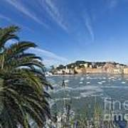Sestri Levante With Palm Tree Poster
