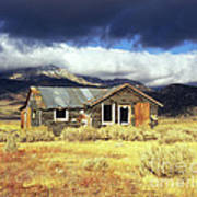 Shack On 395 Poster