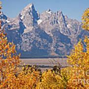 Shadow Mountain Grand Teton National Park Poster