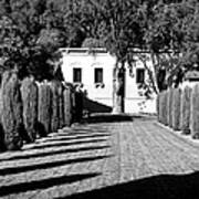 Shadows At Clos Pegase Winery Poster