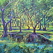 Shadows At Noon - Indian Landscapes Poster