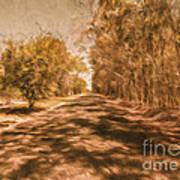 Shadows On Autumn Lane Poster