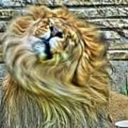 Shake It Off Lazy Boy At The Buffalo Zoo Poster