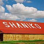 Shaniko Sky And Building Poster