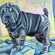 Sharpei ... A Blue Day Poster