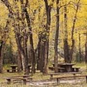 Sheep Creek Canyon Wyoming 13 Poster