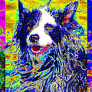 Sheep Dog Three 20130125 Poster by Wingsdomain Art and Photography