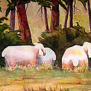 Sheep In The Meadow Poster