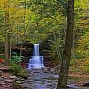 Sheldon Reynolds Falls And Kitchen Creek Poster
