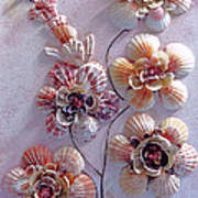Shell Flowers  No 1  Poster