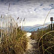 Shell Island Beach Access Poster