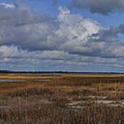 Shell Island To Figure Eight Panorama Poster