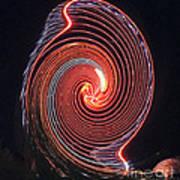 Shell Swirl Poster