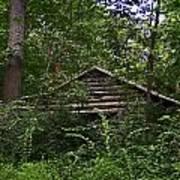 Shenandoah Log Cabin Poster
