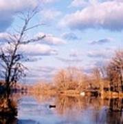 Shenandoah River In Late Autumn Poster