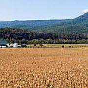 Shenandoah Valley Panorama Poster
