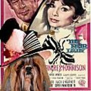 Shih Tzu Art - My Fair Lady Movie Poster Poster