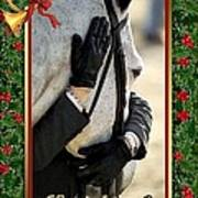 Show Horse English Blank Christmas Card Poster
